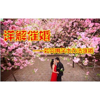 详解用风水办法催婚31